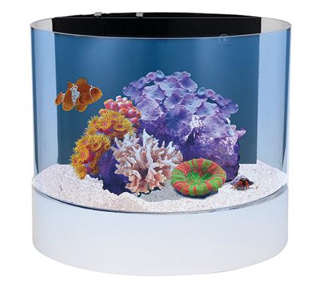 Innovative Marine Nuvo Concept Atoll Aquarium