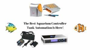 Best Aquarium Controller