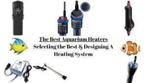 Best Aquarium Heaters