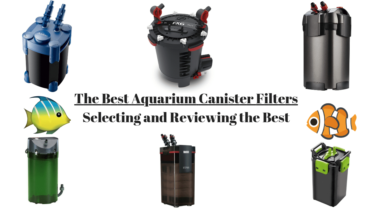 The 11 Best Canister Filters For Aquariums 2021 Reviews